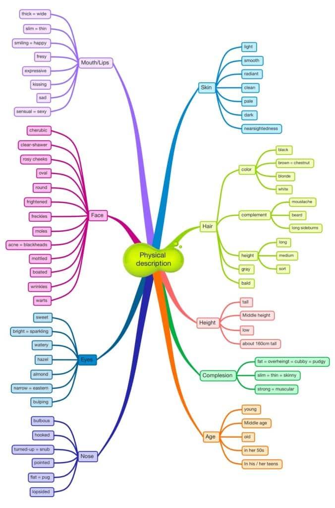 Describir Personas En Ingles Usando Mapas Mentales