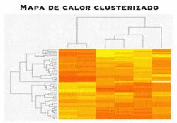 Mapa de calor clusterizado
